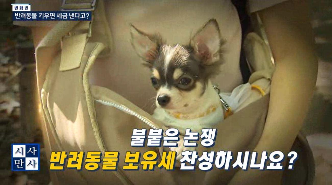 (01/30 방영) (목) 송준우의 시사만사