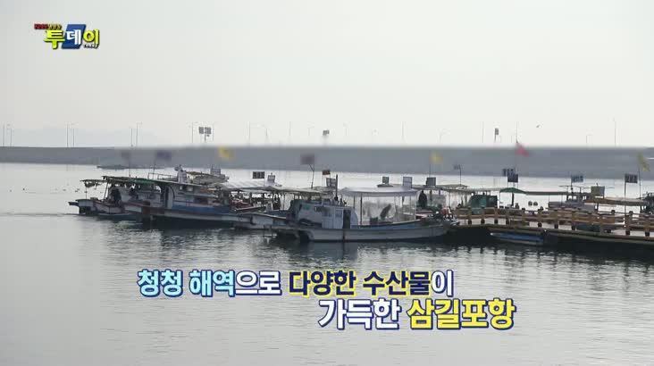(02/14 방영) 시골레시피 – 서산 삼길포 간자미 밥상