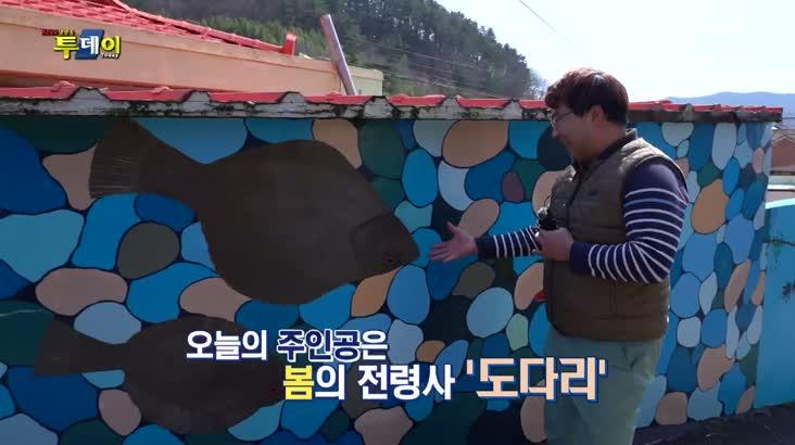 (03/11 방영) 풍물 (짜릿한 손맛의 유혹 – 봄도다리)