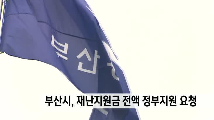 부산시, 정부 재난지원금 전액 국비지원 요구 방침