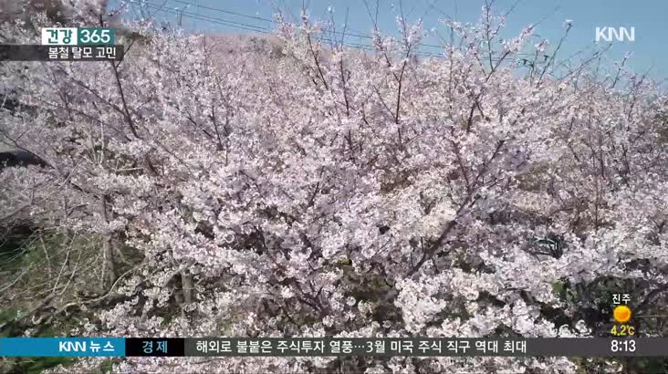 [건강365] 일교차-미세먼지가 탈모의 원인? 봄철 탈모 관리법