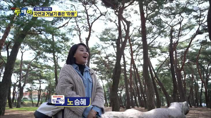 (04/03 방영) 고독한 여행가 – 자연과 거닐기 좋은 ''하동''