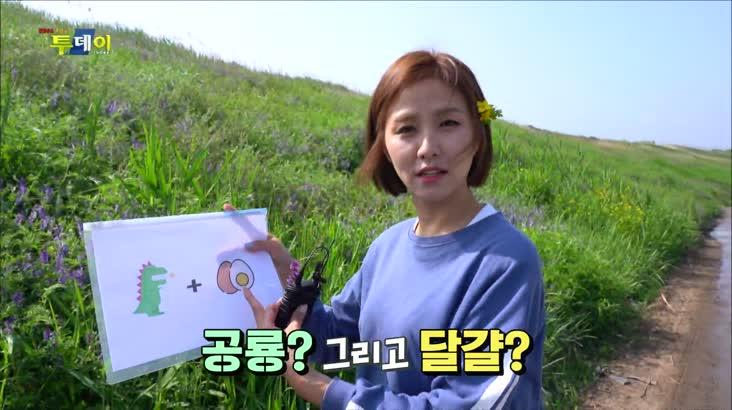 (05/26 방영) 풍물 (달콤, 아삭! 함안 백자 멜론)