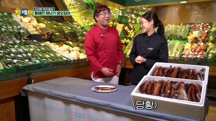 (05/28 방영) 신선한 우리밥상 – 동해안 채낚기 생오징어
