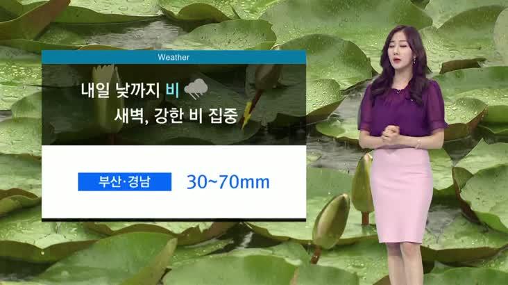뉴스아이 날씨 6월10일(수)