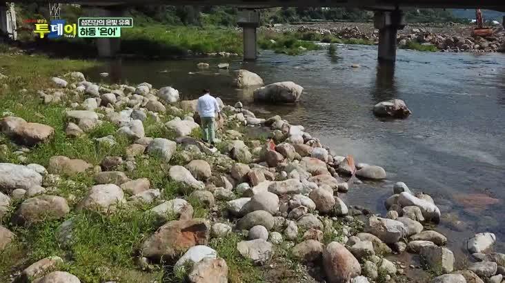 (06/22 방영) 풍물 (섬진강의 은빛 유혹 – 하동 ''은어'')