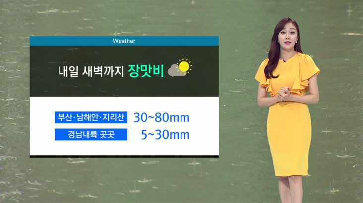 뉴스아이 날씨 6월24일(수)