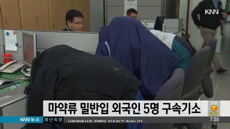 마약류 밀반입 외국인 5명 구속기소