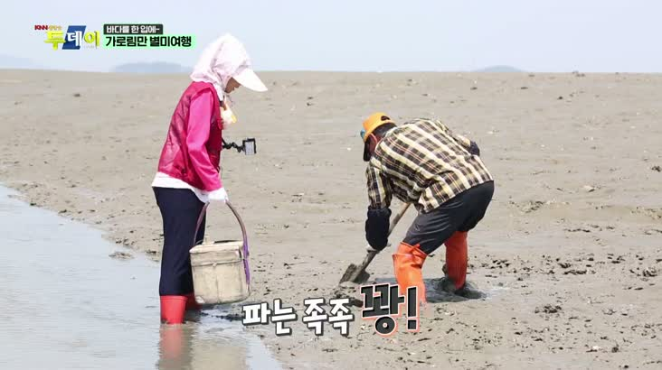(07/08 방영) 바다를 한 입에~ 가로림만 별미여행