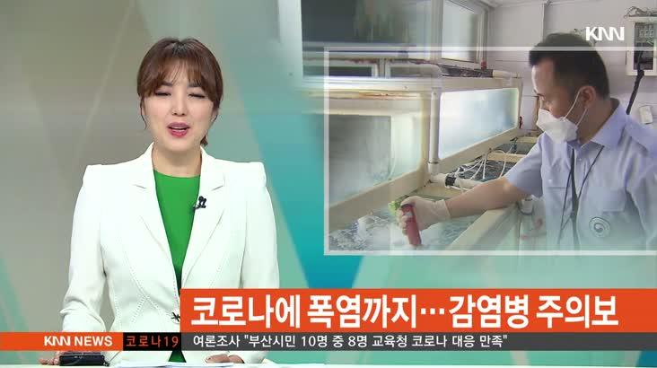 (07/09 방영) 뉴스와 생활경제