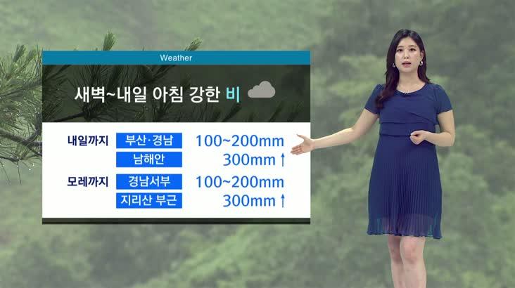 뉴스아이 날씨 7월12일(일)