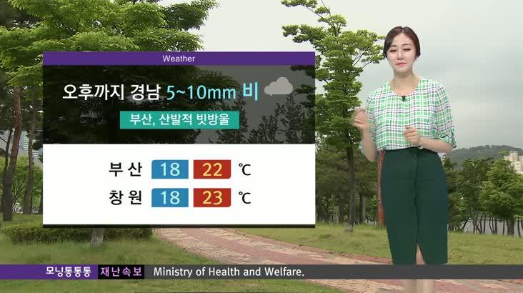 모닝 통통통 날씨 7월15일(수)