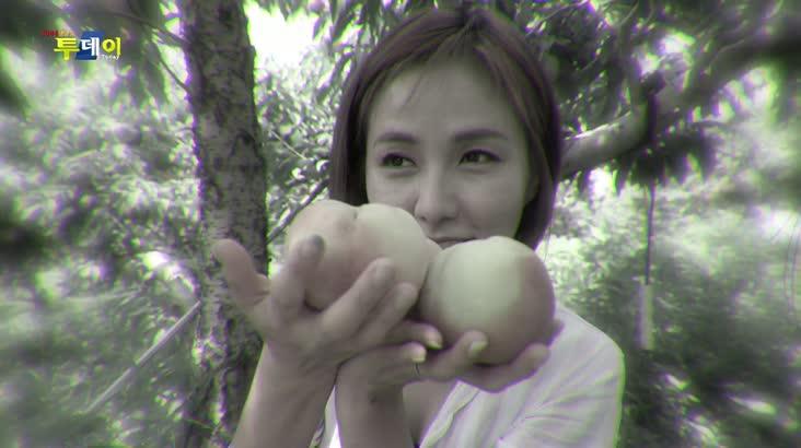 (07/20 방영) 풍물 (여름 과일의 여왕 – 함안 복숭아)