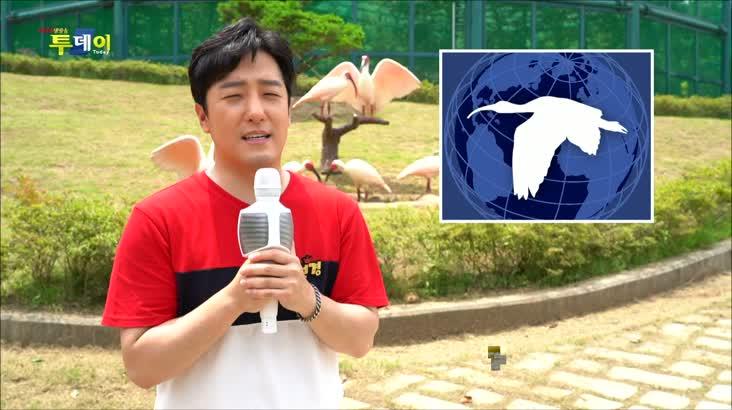 (07/28 방영) 찾아가는 신바람 S.O.S – 창녕 따오기 품은 세진마을