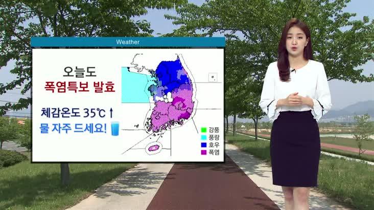 모닝와이드 날씨 0803(월)