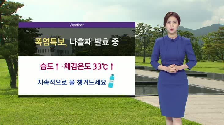 모닝통통통 날씨 0804(화)