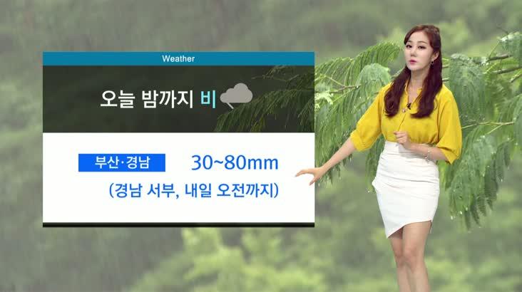 뉴스아이 날씨 8월10일(월)