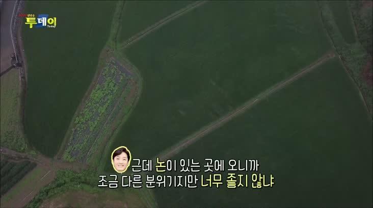 (08/11 방영) 찾아가는 신바람 S.O.S – 정이 가득한 행복마을 사천 통정마을로 오세요