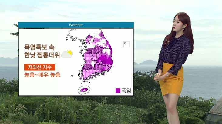 뉴스아이 날씨 8월12일(수)