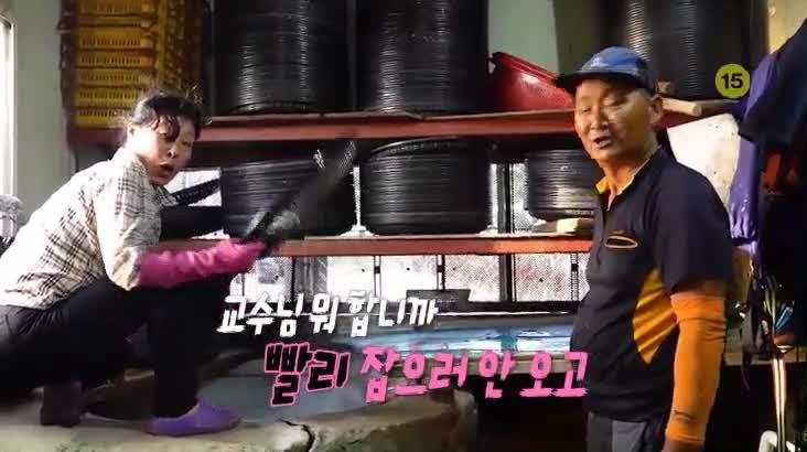 (08/26 방영) 섬마을할매 시즌2 – 멸치잡는 명량할매