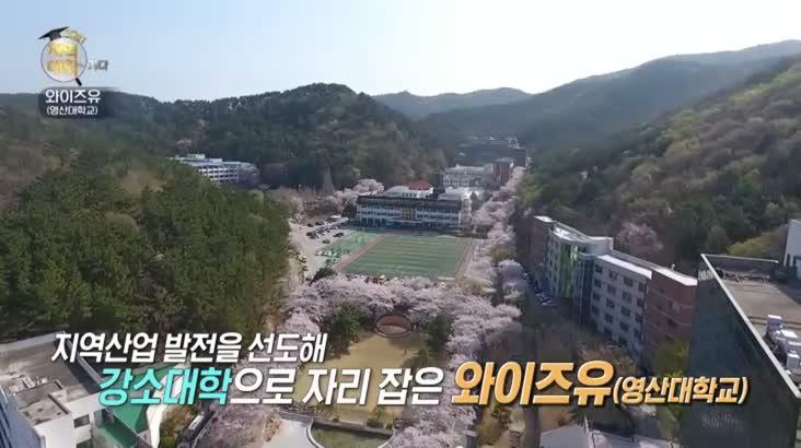(09/16 방영) 2021 지역대학을 가다 – 와이즈유(영산대학교)