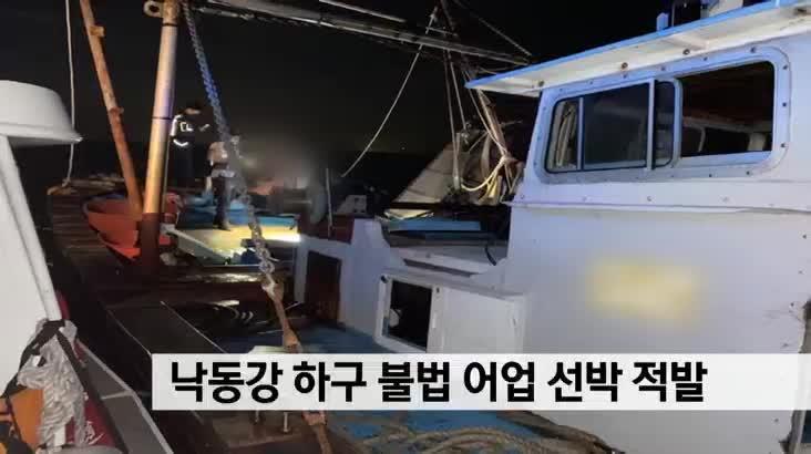 낙동강 하구 불법 어업 선박 적발