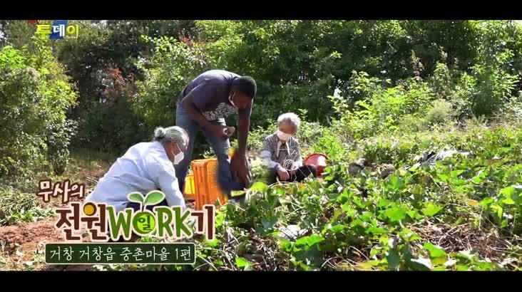 (10/15 방영) 무사의 전원일기 –  거창 거창읍 중촌마을 1편