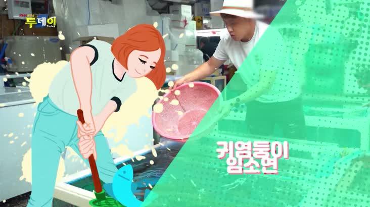 (10/22 방영) 으랏차차 장터 시즌 12  – 부산 망미중앙시장 1편