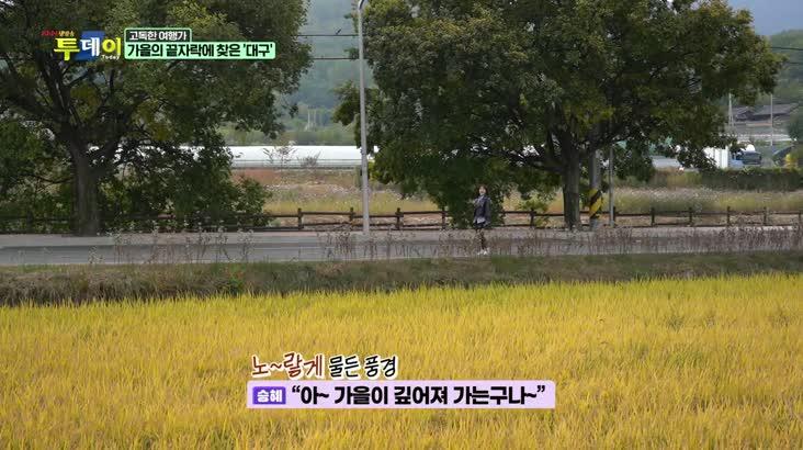 (11/06 방영) 고독한 여행가 – 가을의 끝자락에 나선 '대구'