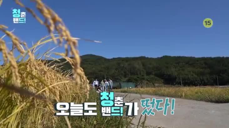 (11/15 방영) 청춘밴드 2부