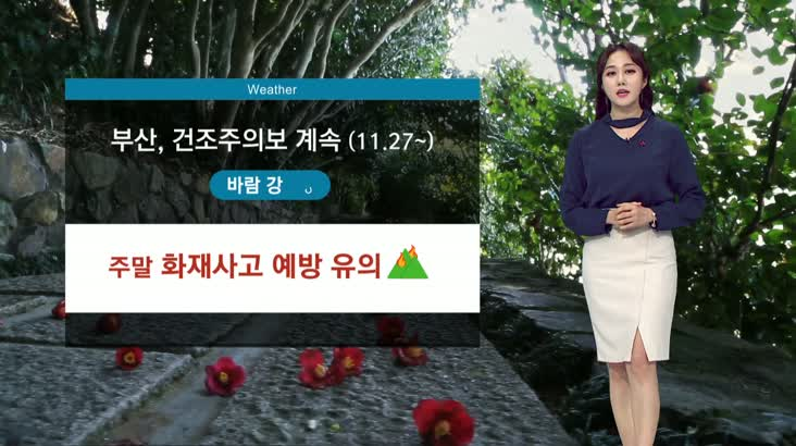 뉴스아이 날씨 12월11일(금)