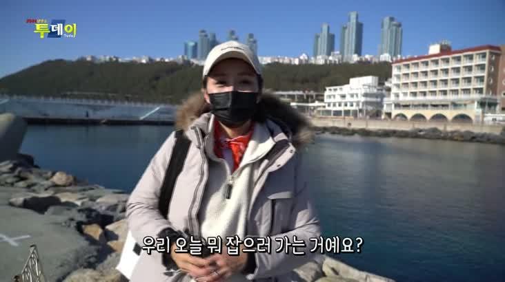 (01/18 방영) 풍물 – 겨울 바다를 수놓은 붉은 보석 불볼락