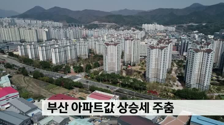 부산 아파트값 상승세 주춤