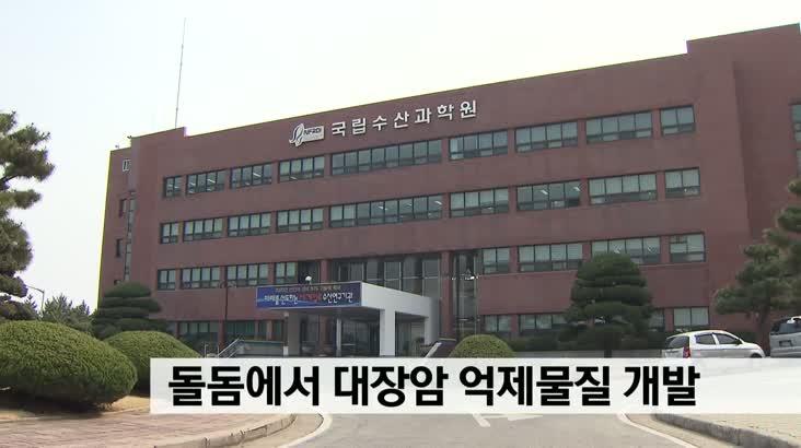 """수산과학원,""""돌돔에서 대장암 억제물질 개발"""""""