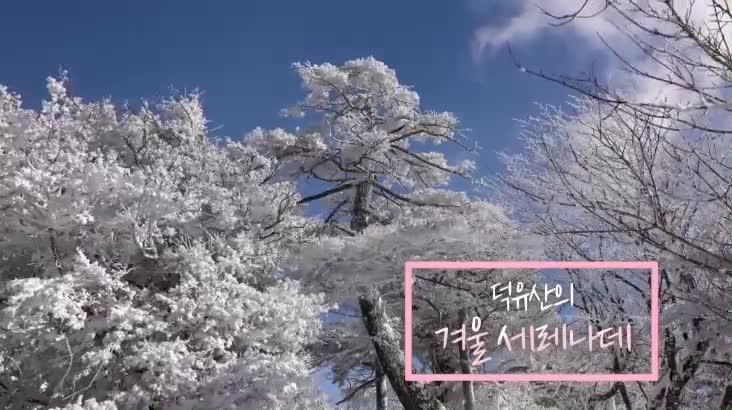 (02/13 방영) 덕유산의 겨울 세레나데