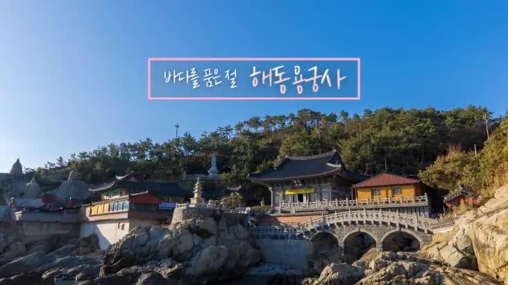 (02/20 방영) 바다를 품은 절 해동용궁사