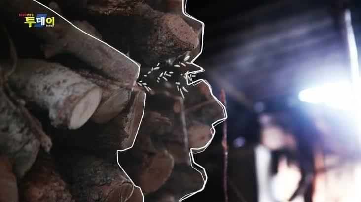 (03/16 방영) 미행 갑니다 – 산청 지리산 덕천강마을 1편