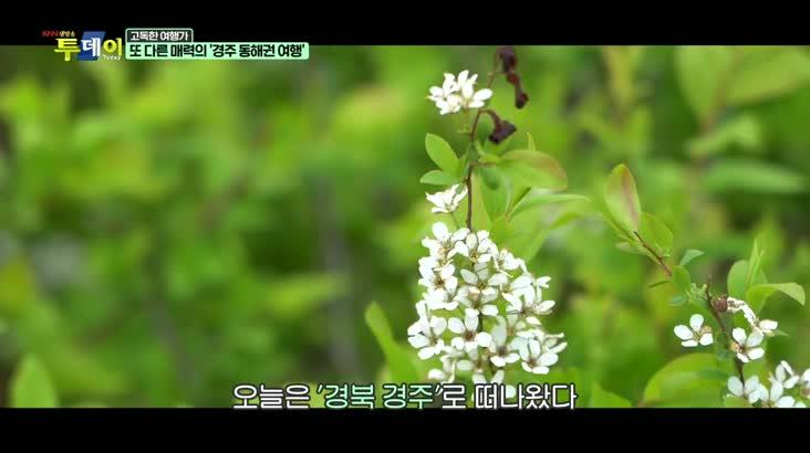 (04/14 방영) 고독한 여행가 – 또 다른 매력의 '경주 동해권 여행'