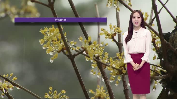 모닝 통통통 날씨 5월 18일 (화요일)