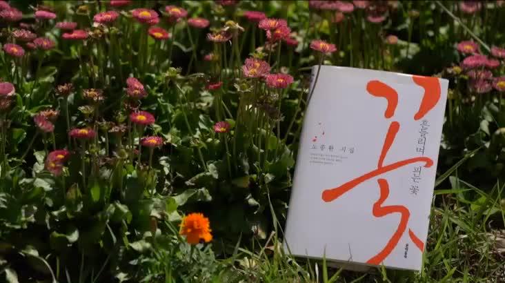 (06/21 방영) 행복한 책읽기 – 흔들리며 피는 꽃 (김일권 / 양산시장)
