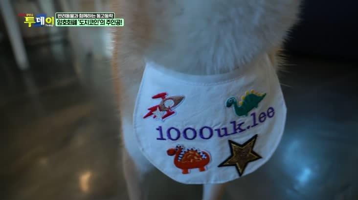(08/09 방영) 반려동물과 함께하는 동고동락 – 유기견 보호소에서 만난 천억이와의 하루!