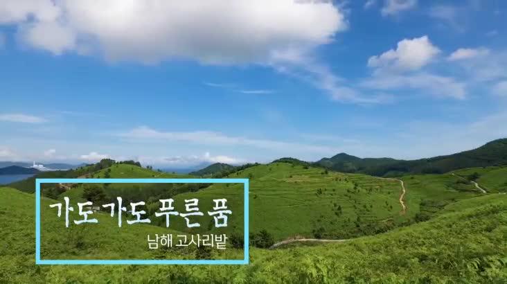 (08/28 방영) 위대한 유산 100경 – 가도 가도 푸른 품, 남해 고사리밭