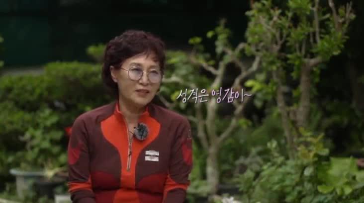 (09/05 방영) 섬마을할매 시즌3 – 동백꽃 당신 이경자
