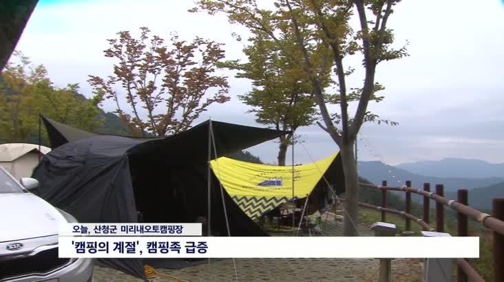 '가을 캠핑족 잡아라', 경쟁 치열